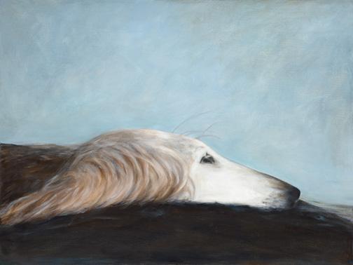 Aviva in Profile